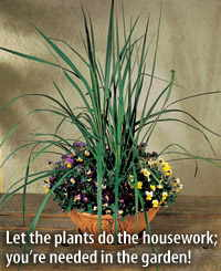 Let the plants do the housework; you're needed in the garden!