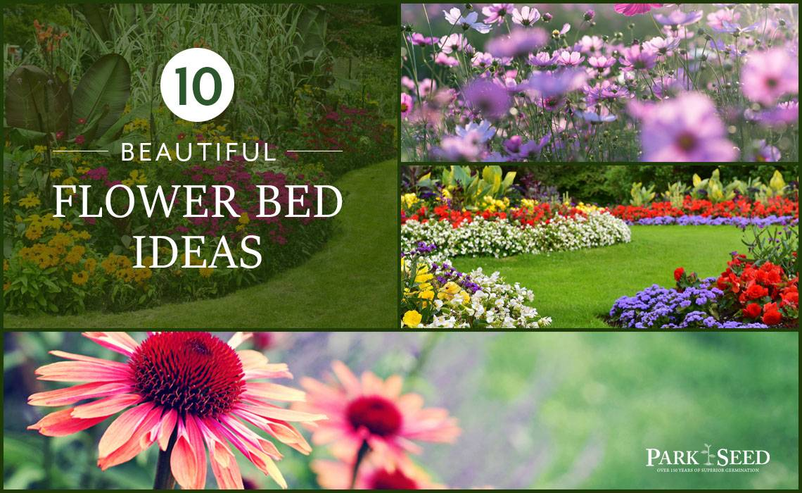 10 Beautiful Flower Bed Ideas Park Seed