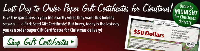 Last Day to Order Paper Gift Certificates for Christmas! Give the gardeners in your life exactly what they want this holiday season -- a Park Seed Gift Certificate! But hurry, today is the last day you can order paper Gift Certificates for Christmas delivery! Shop Gift Certificates