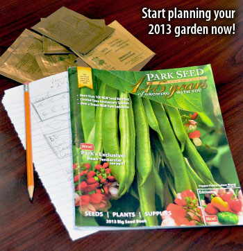 Start planning your 2013 garden now!