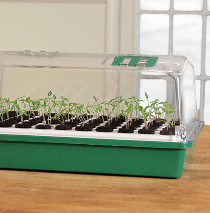 Shop All Bio Dome Seed Starters