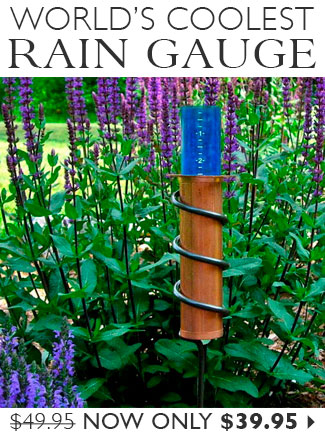 World's Coolest Rain Gauge Only $39.95