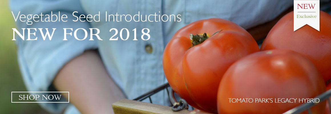 New Veggie Seed for 2018