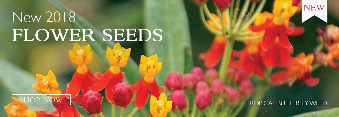 New 2018 Flower Seeds