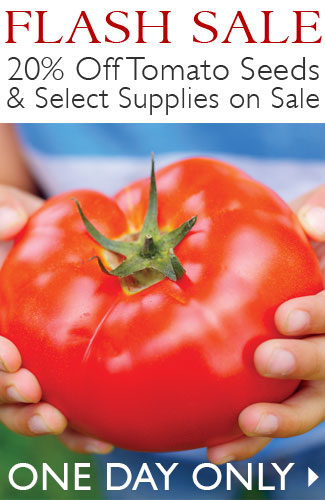 FLASH SALE on Tomato Seeds and Supplies - SHOP NOW
