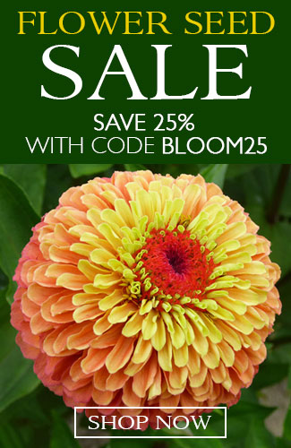 25% off Flower Seeds with code BLOOM25