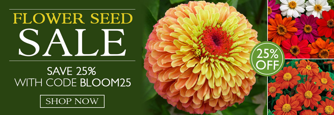 25% Off Flower Seed with code BLOOM25