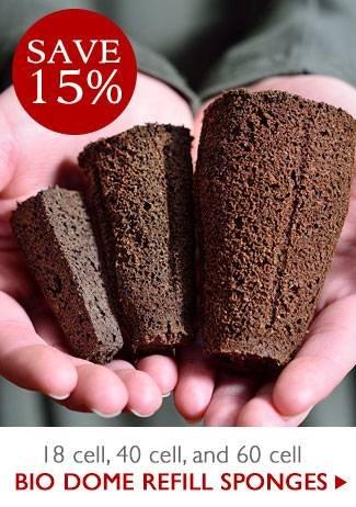 15% OFF Bio Dome Sponges