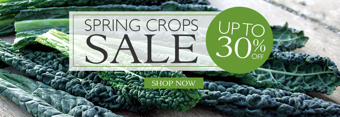 Spring Crops Sale up to 30% OFF - SHOP NOW