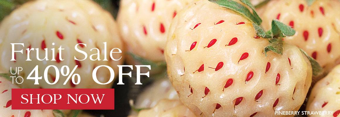 Fruit Sale - Save up to 40% on Select Fruits and Edibles