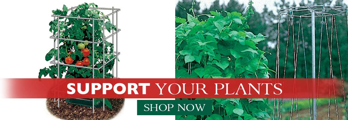 Support Your Plants with these Supplies