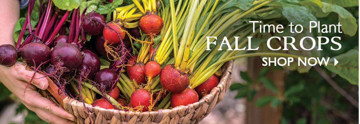 Time to Plant Fall Crops! - SHOP NOW