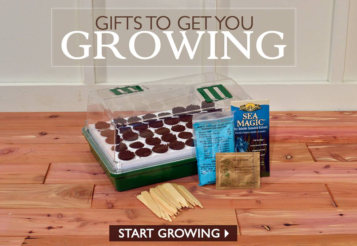 Gift to Get YOu Growing - SHOP NOW