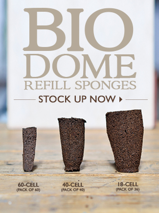 Bio Dome Sponges - SHOP NOW