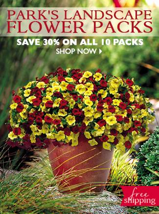 Save 30% on Landscape Flower Packs - SHOP NOW