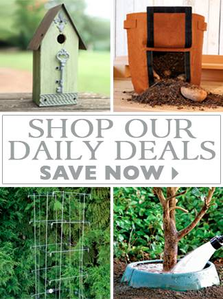 Shop Our Daily Deals - SAVE NOW