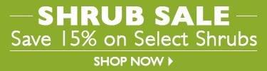 Shrub Sale - Save 15% On Select Shrubs - SHOP NOW