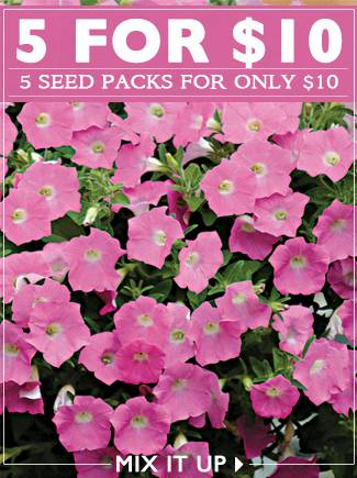 Mix and Match 5 Seed Packs for $10 - SHOP NOW