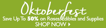 Save Up To 50% On Edibles, Roses and Supplies - SHOP NOW