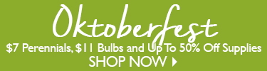 Oktoberfest Sale - SHOP NOW