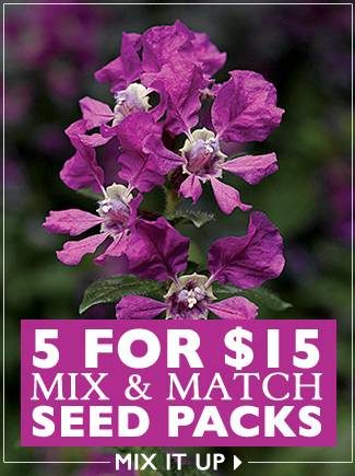 5 for $15 Mix and Match 5 Seed Packs - SHOP NOW