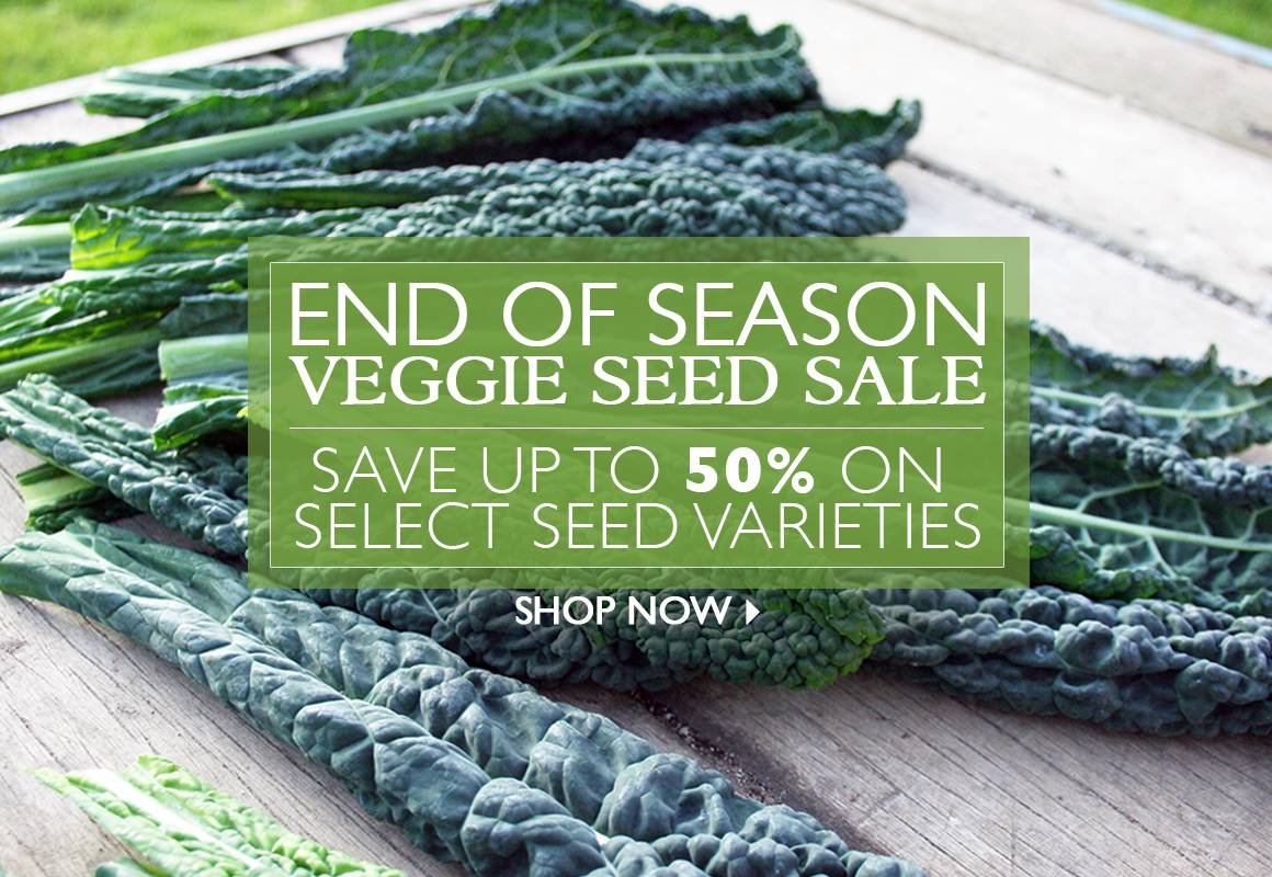 Save up to 50% on Select Veggie Seeds - SHOP NOW