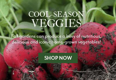 Cool-Season Veggies