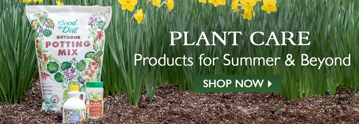 Everything you need for Fall Plant Care