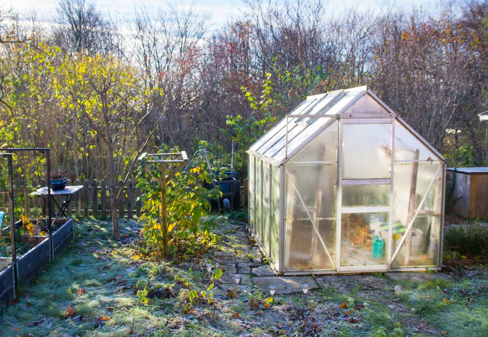 Garden greenhouse in late autumn