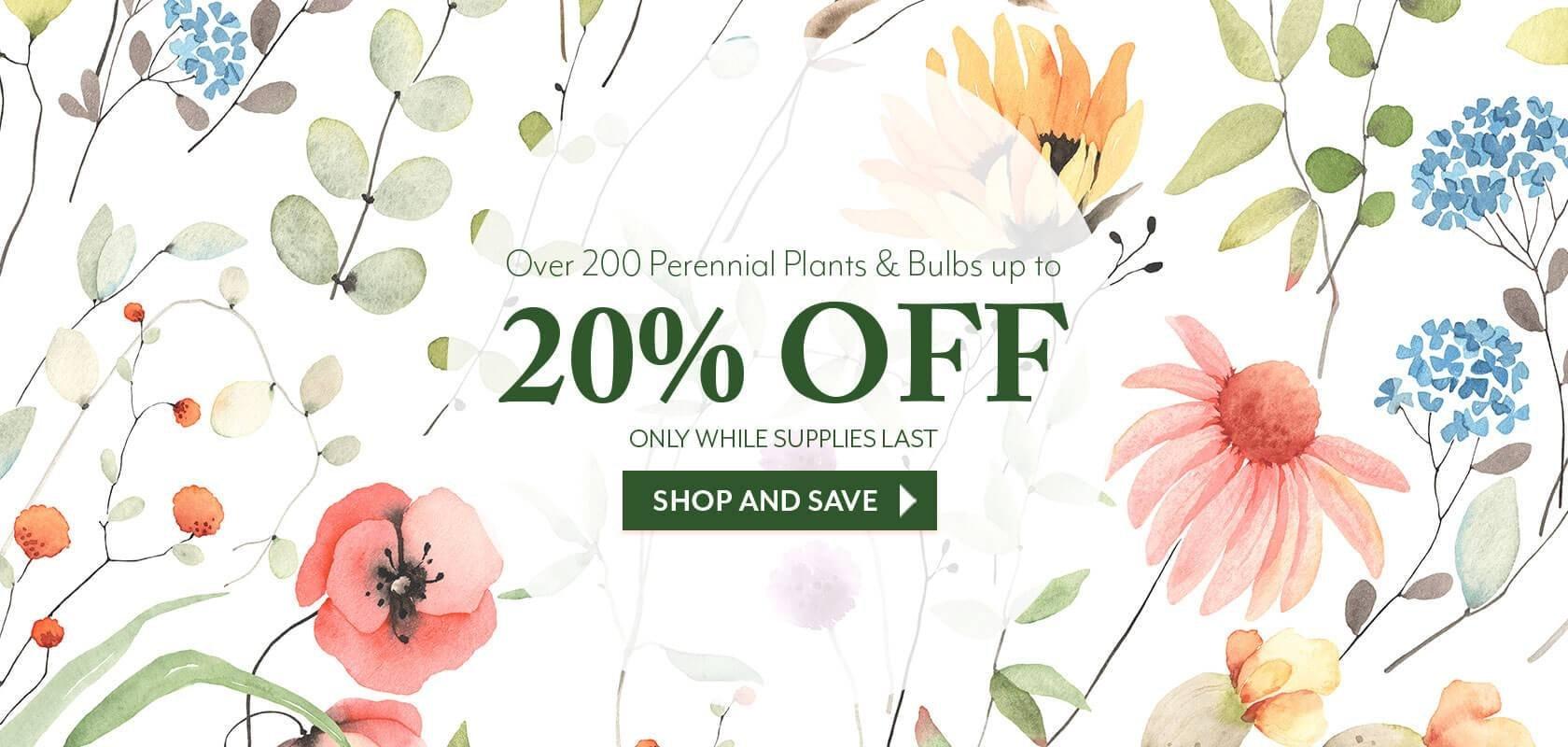 Plants and Bulbs Sale
