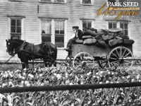 Park Seed Co. in La Park, PA ca. 1910
