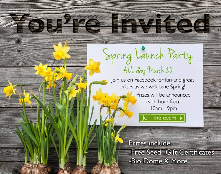 Spring Launch Facebook Event