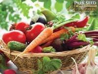 Veggie Garden Collection