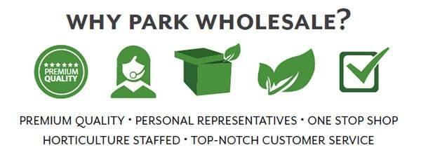 Why Park Wholesale?