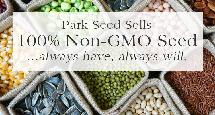 Park Seed Sells 100% non-GMO Seed...always have, always will.