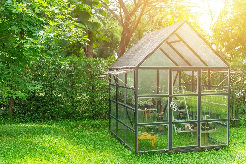green house in the home garden