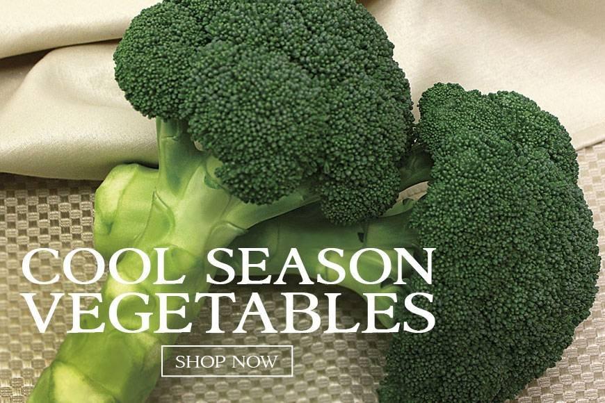 Cool Season- veggies