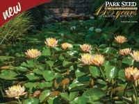 parks water garden