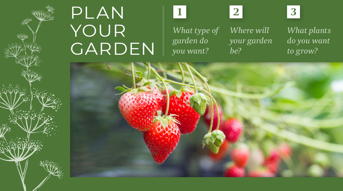 Plan your garden graphic