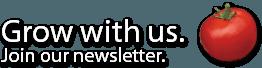 Newsletter background image