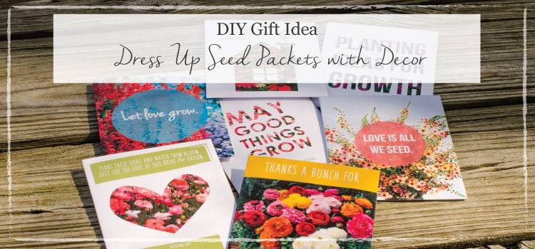 Seed Wrapper ARticle Main Image