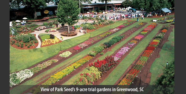 View of Park Seed's 9-acre trial gardens in Greenwood, SC