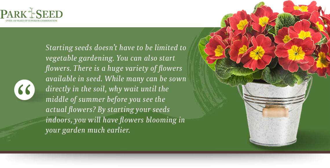 starting flower seeds quote