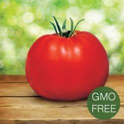 Trends 2015 GMO Free Image