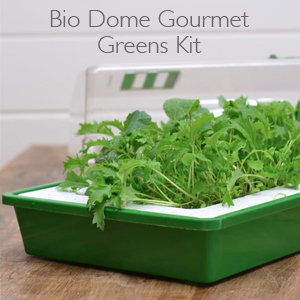 Bio Dome Gourmet Green Kit
