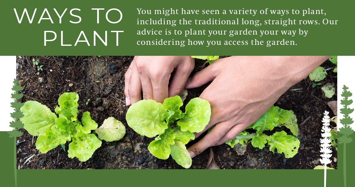 ways to plant garden graphic