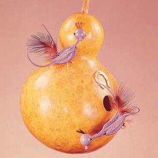 Siphon or Dipper Gourd Seeds