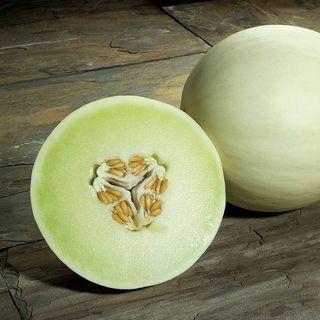 Snow Mass Honeydew Melon Seeds