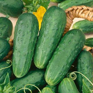 Homemade Pickles Cucumber Seeds