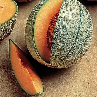French Orange Hybrid Melon Seeds